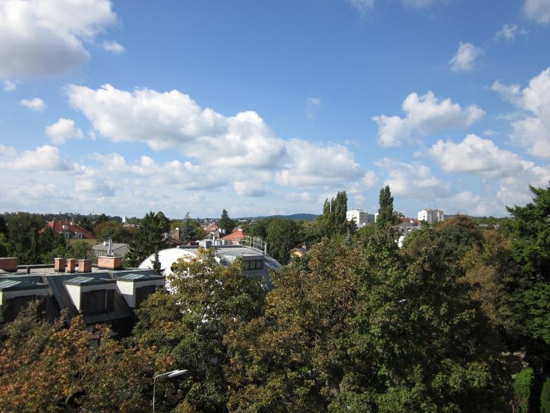 Пентхаус в Вене ПРОДАЖА - 19-й район (Doebling) - Вена - Австрия